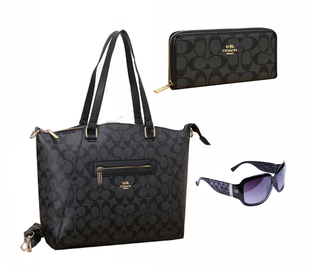Coach Factory Outlet $119 Value Spree 17