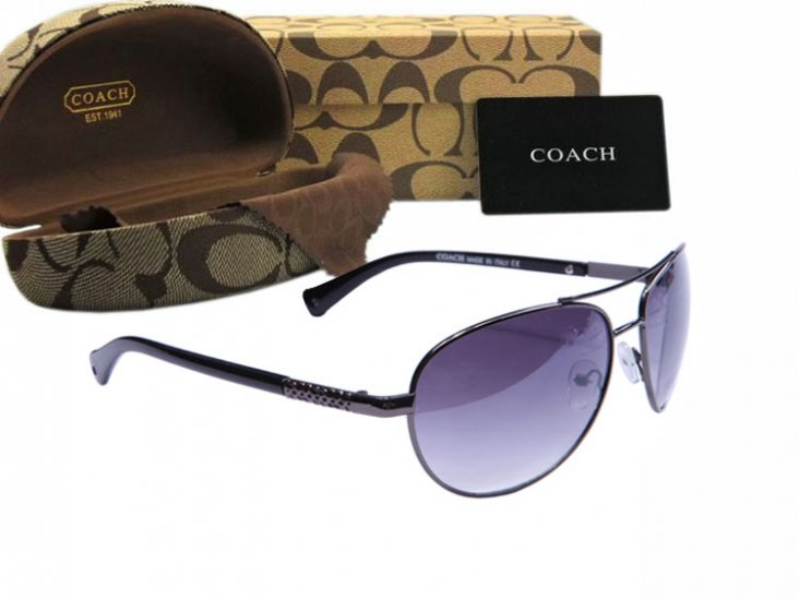 Coach Sunglasses 8015
